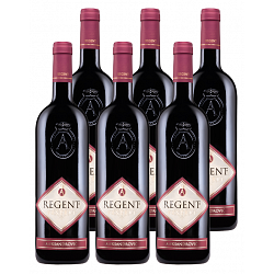 Regent Reserve 2009 Aleksandrovic Red Wine Pack of 6